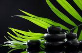 Pietre Spa e foglia di Palma di verde su sfondo nero — Foto Stock