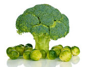 Fresh brussels sprouts and broccoli isolated on white — Stock Photo