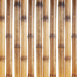 Dry bamboo sticks isolated on white - Stock Photo