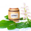 A barrel of honey and chestnut flowers isolated  on white background — Stock Photo