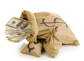 Bags with money isolated on white — Stock Photo