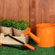 Gardening tools on wooden background - Foto de Stock