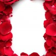 Beautiful petals of red roses and roses isolated on white — Stock Photo #8112747