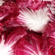 Red cabbage leaves closeup — Stock Photo