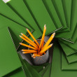 Many green folders closeup — Stockfoto
