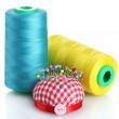 Bobbins of thread with pinheads in pin-cushion isolated on white — Stock Photo #8116457