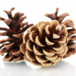 Three beautiful pine cones isolated on white — Stock Photo