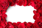 Frame of beautiful petals of red roses — Stock Photo