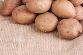 Fresh potatoes on burlap closeup — Stock Photo