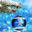 Christmas ball on the tree on blue — Stock Photo #8121099