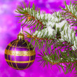 Christmas ball on the tree on purple - Stock Photo