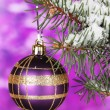 Christmas ball on the tree on purple — Stock Photo
