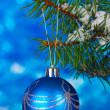 Christmas ball on the tree on blue - Stockfoto