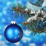 Christmas ball on the tree on blue — Stock Photo #8121533