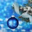 Christmas ball on the tree on blue — Stock Photo #8121542