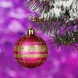 Christmas ball on the tree on purple - Zdjęcie stockowe