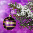 Christmas ball on the tree on purple - Foto Stock