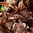 Various gold jewellery closeup — Stock Photo