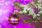 рождественский бал на дереве на фиолетовый — Стоковое фото