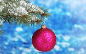 Christmas ball on the tree on blue — Stock Photo