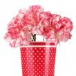 Royalty-Free Stock Photo: Beautiful carnations in red cup isolated on white