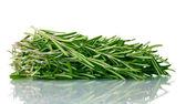 Fresh green rosemary isolated on white — Stock Photo