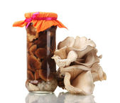 Delicious marinated mushrooms in the glass jars, raw oyster mushrooms isola — Stock Photo