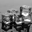Melting ice cubes on grey background — ストック写真
