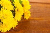 Yellow Chrysanthemums flowers on wooden background — Stock Photo