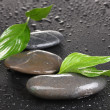 Spa stones with water drops and leaves on black background — Stock Photo #8255808