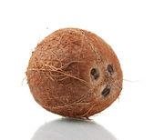 Сoconut isolated on white — Stock Photo
