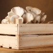 Oyster mushrooms in wooden box on table on brown background — Stock Photo #8305872