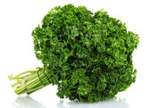 Fresh bunch of parsley isolated on white — 图库照片