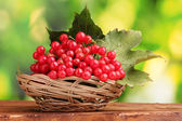 Red berries of viburnum in basket on wooden table on green background — Stock Photo