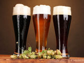 Three glasses with different beers and hop on wooden table on brown backgro — Stock Photo