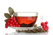 Black tea with red viburnum in glass cup isolated on white — Stock Photo