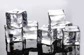 Ice cubes on grey background — Stock Photo