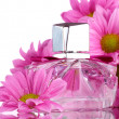 Women's perfume in beautiful bottle and flowers isolated on white — Stock Photo #8563724