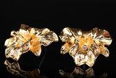 Siyah arka plan üzerinde güzel altın küpe — Stok fotoğraf