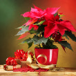 Stock Photo: Beautiful poinsettia in flowerpot on wooden table on bright background