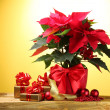 Beautiful poinsettia in flowerpot, gifts and Christmas balls on wooden tabl — Stock Photo