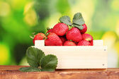 Strawberries with leaves in wooden box on table on green background — Stock Photo