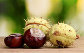 Green and brown chestnuts on wooden table on green background — Stock Photo