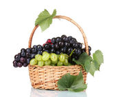 Ripe red grapes in basket isolated on white — Stock Photo