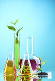 Test tubes with plants on blue background — Stock Photo
