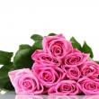 Many pink roses isolated on white — Stock Photo