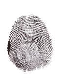 Fingerprint isolated on white — 图库照片