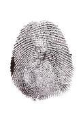 Fingerprint isolated on white — Stock Photo