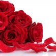 Beautiful red roses and petals isolated on white — Stock Photo #8765921