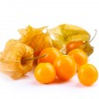 Physalis heap isolated on white — Stock Photo #8770995